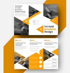 design a white tri-fold brochure vector image