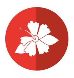 Hibiscus flower exotic shadow vector