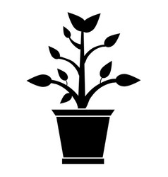 pot plant garden pictogram vector image
