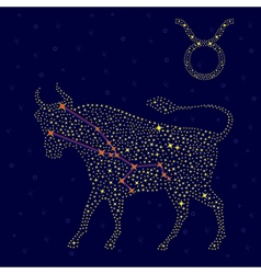 Zodiac sign taurus over starry sky vector