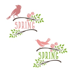 Set of labels of spring birds in branches with vector
