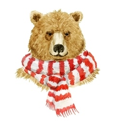 Brown bear wearing a scarf vector