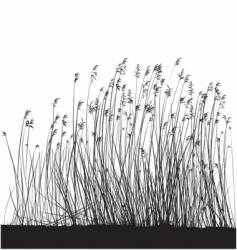 Grass landscape vector