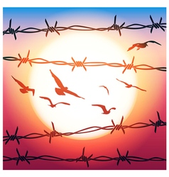 Barbed wire and flying birds vector