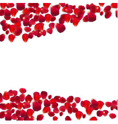 Background of naturalistic rose petals vector