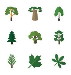 Flat icon natural set of jungle park baobab and vector