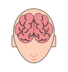 Human brain icon image vector