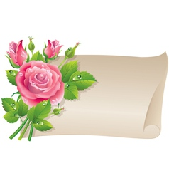 Roses scroll vector