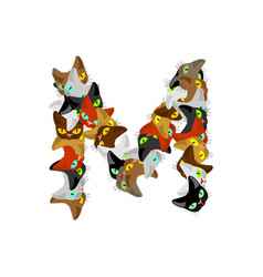 Letter m cat font pet alphabet symbol home animal vector