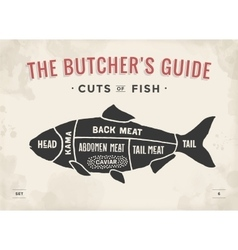 Cut of meat set poster butcher diagram and scheme vector