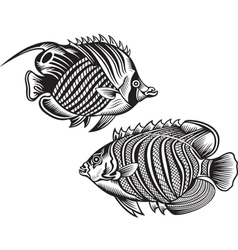 decorative fish vector image vector image