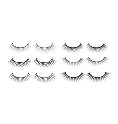 False eyelashes fake the cilia a collection of vector