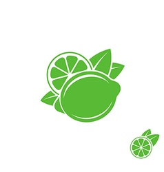 Lime tropical fruit on white background vector