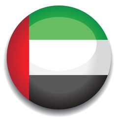 uae flag vector image