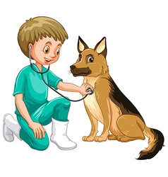 Vet examining dog with stethoscope vector image vector image