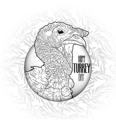 Graphic design with turkey vector