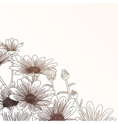Daisy flowers on a beige background outline vector