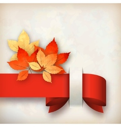 Autumn fall leaves card vector