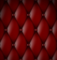 Luxury red leather vector