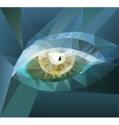 color polygonal eye design vector image