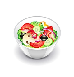 Vegetables salad isolated on white vector