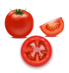 Realistic detailed red tomato and segment parts vector