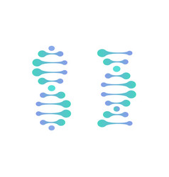 Abstract dna molecule logo turquoise and vector