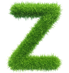 Capital letter z from grass on white vector