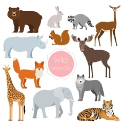 Wild animals set Fox rhino elephant bear vector image