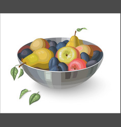 Bowl with fruits isolated on white vector