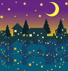 Night scene with many houses vector image
