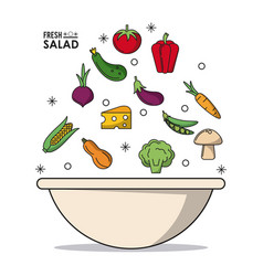 Colorful poster of bowl fresh salad with vector
