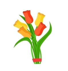 Colorful tulips flower bouquet tied with red vector