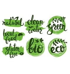 eco friendly natural bio logo set Green vector image vector image