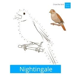 Nightingale bird learn to draw vector