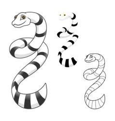 Sea snake vector