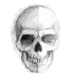 Skull sketch vector image vector image
