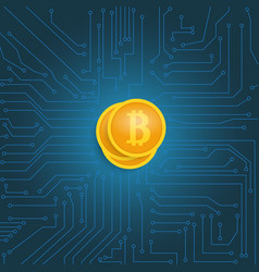 coin bitcoin on the motherboard vector image vector image