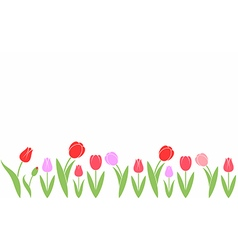 Tulip abstract flowers on white background vector