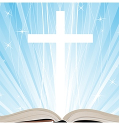Holy book and shine vector