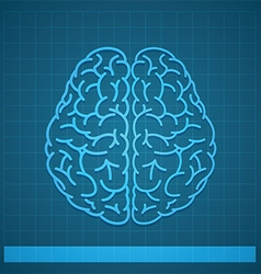 Human brain concept on blue background vector