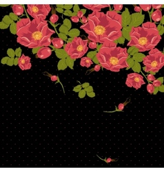Floral ornament with wild rose on a polka dot vector