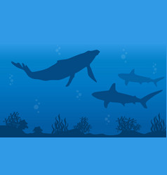 Silhouette of whale and shark on ocean landscape vector
