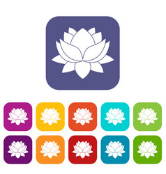 Water lily flower icons set flat vector