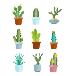 Cartoon cactus desert plants icons vector image