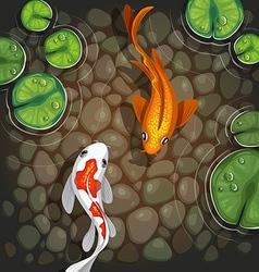 carps underwater top view vector image