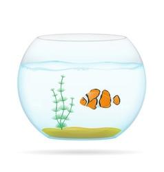 aquarium with fish 01 vector image