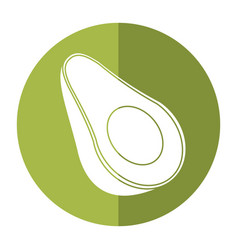 Avocado harvest nutrition icon shadow vector