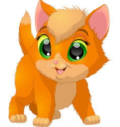 Funny kitten baby vector