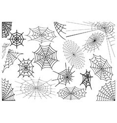 Spiderwebs vector image vector image